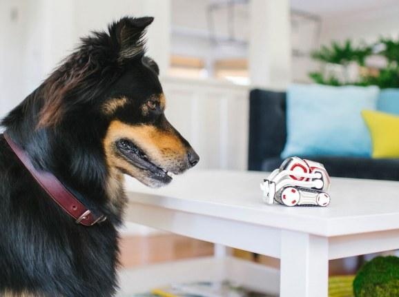 知音玩具机器人Cozmo通过最新更新变得更聪明